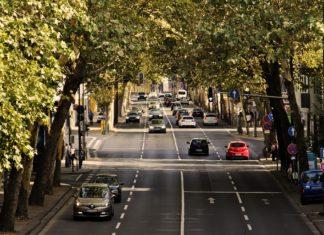 Wydajne zarządzanie flotą pojazdów – jak sobie z tym radzić?